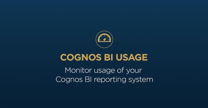 BI_usage.jpg
